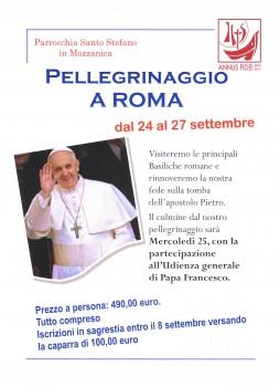pellegrinaggio_roma_201309