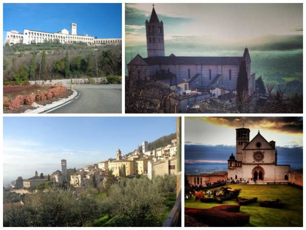 collage_assisi13